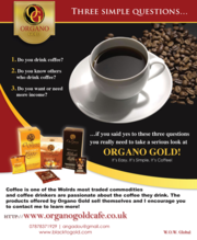 Local self-employed ORGANO GOLD Distributor opportunities in Glasgow