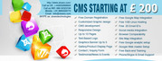 CMS Websites Starts From 200US Dollars Only